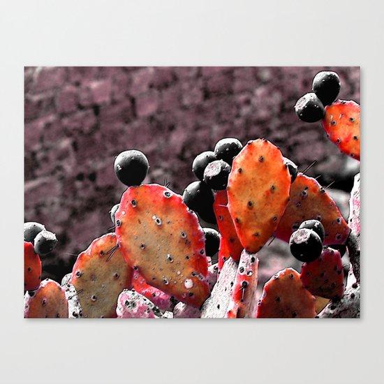 Cactus-Orange Canvas Print