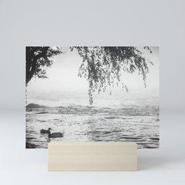 Saluda River Ducks Mini Art Print