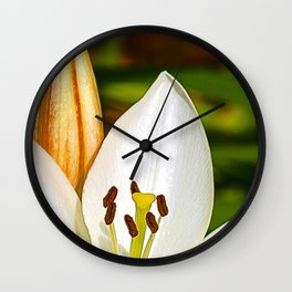 White Lily and Bud (Digital Art) Wall Clock