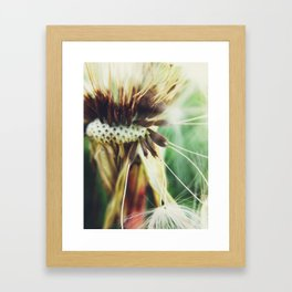 Dandelion: Seeds Vertical Framed Art Print