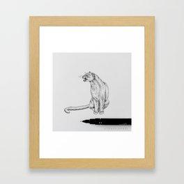 Jaguarundi Framed Art Print