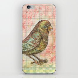 Bird on a Budget iPhone Skin