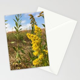 Tennessee Goldenrod Stationery Cards