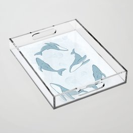 Hand-Drawn Humpback Whale Song in Slate Acrylic Tray