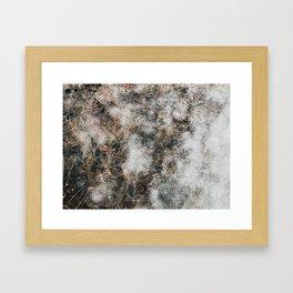 Frozen plants Framed Art Print