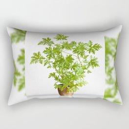 Pelargonium citrosum plant Rectangular Pillow