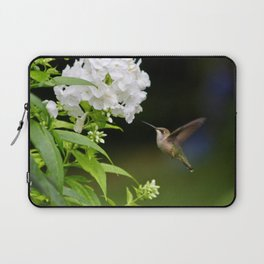Hummingbird and Flowers Laptop Sleeve
