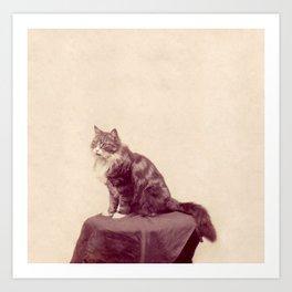 Cat Called Purple Art Print
