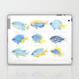 Genus Chrysiptera Laptop & iPad Skin