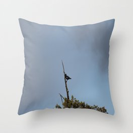 Perched Before the Storm Throw Pillow