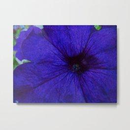 Blue Petunia Flower Macro Watercolor Metal Print
