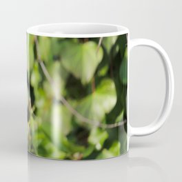 European Robin Donegal Ireland 113 Coffee Mug