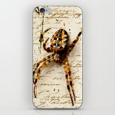 Spider Letter iPhone & iPod Skin