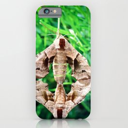Macro of two Poplar Hawk-Moth butterflies copulating on lavender stem iPhone Case