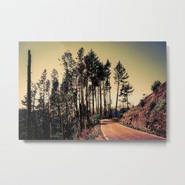 Woodland #2 Metal Print