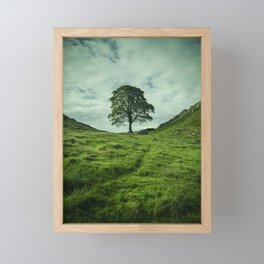 Sycamore Gap Hadrian's Wall Framed Mini Art Print