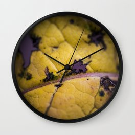 traces Wall Clock