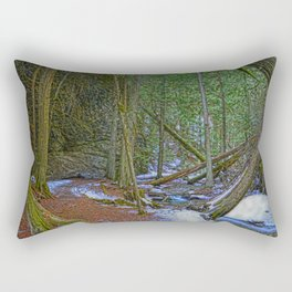 The Trail to the Falls - Nature Photo HDR Rectangular Pillow