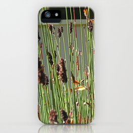 Reeds iPhone Case