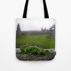 Ancient Windowsill Tote Bag