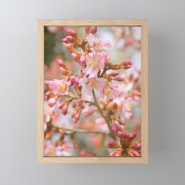 Blossom in the Spring time and fall in love Framed Mini Art Print