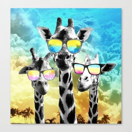 Crazy Cool Giraffe Canvas Print