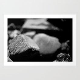 Garden rocks  Art Print