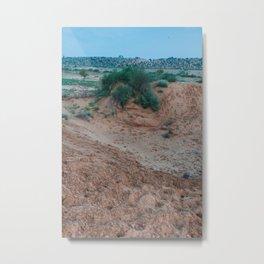 A desert walk Metal Print