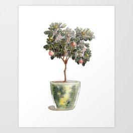 Potted Orange Tree Watercolor Art Print