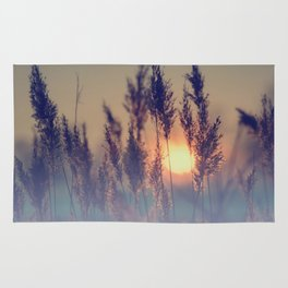 Winter sun in the reed Rug