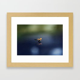 Take Off Framed Art Print