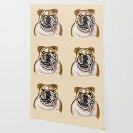 Smiling Bulldog Wallpaper