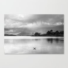 Evening rainclouds, bird and distant rain over Skiddaw and Derwent Water. Lake District, UK. Canvas Print
