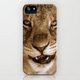 cute lion cub iPhone Case
