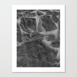 The Wall - 3 Canvas Print