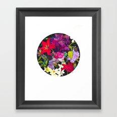Black Parrot Tulips Framed Art Print