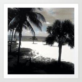 Palms in Bahamas Art Print