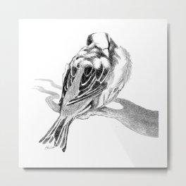 Cute Fluffy Bird Sleeping Metal Print