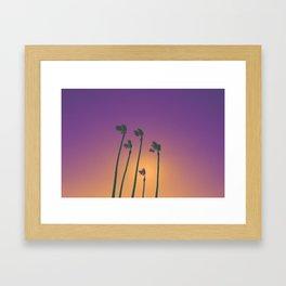 Palm Sherbet Framed Art Print