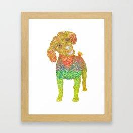 Excited Poodle Framed Art Print
