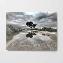 Potrero Creek Metal Print