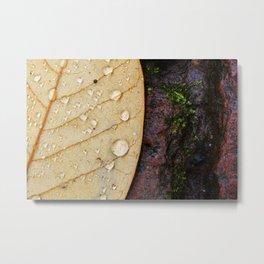 November Rain. Metal Print