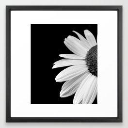 Half Daisy in Black and White Framed Art Print