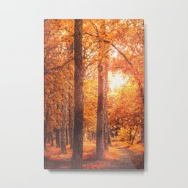 Autumn time in park Metal Print