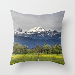 Green field with snowy alps Throw Pillow