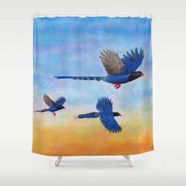 Taiwan Blue Magpies (2) Shower Curtain