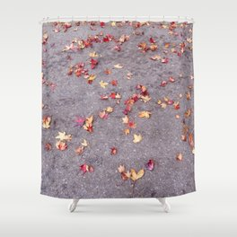 Autumn leaves, colours, gutters in Vancouver, BC Shower Curtain
