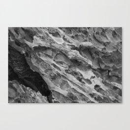 hardened Canvas Print
