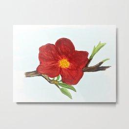 Bright Red Plumb Blossom Metal Print