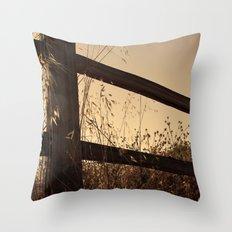 Broken Fence Throw Pillow